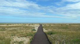 Pagham Harbour nature reserve